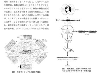 側彎症に対し膜構造論を基に治療を行った1症例の表紙