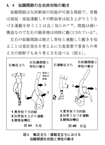 左並びに右利き足被験者における右仙腸関節の外方変位像― 筋骨格系疾患の発症機序を考えて(第三報)-の表紙
