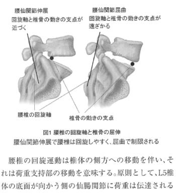 仙腸関節の機能的左右差に関する考察一新たな検査法の提案とその解釈について-の表紙