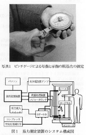 下部腰椎の筋紡錘への刺激による筋力への影響の表紙
