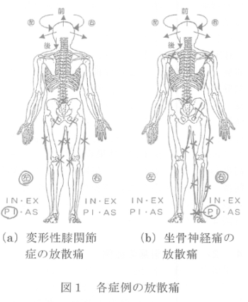 韓国にて施療した変形性膝関節症と坐骨神経痛の各1症例報告の表紙