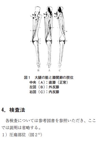膝関節内側部の痛みに関する分析の表紙