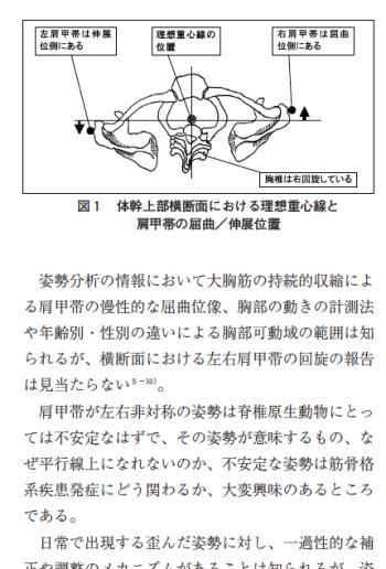 肩甲帯の左回旋に対する脊柱の補填作用の表紙