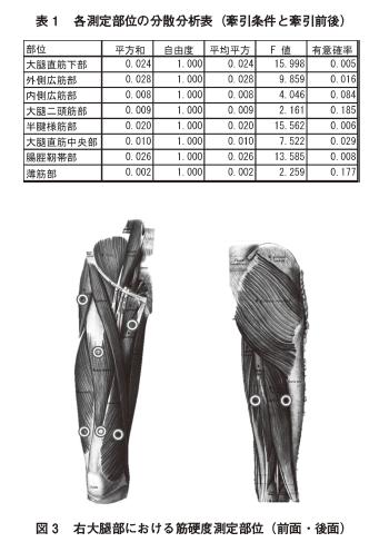 股関節マイクロ牽引法が大腿部の筋硬度に及ぼす影響の表紙