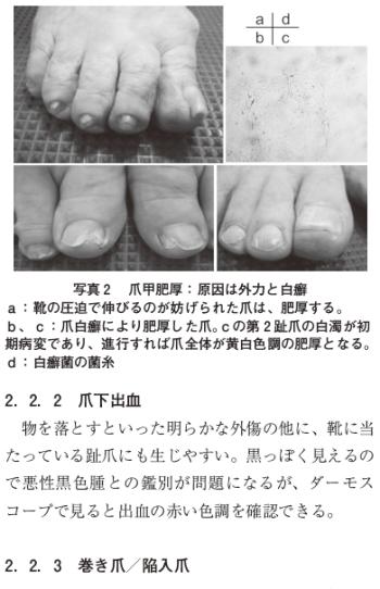 足の構造・機能と皮膚疾患の関わりの表紙