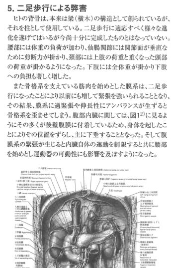 カイロブラクテイック全体論についての考察一全身的メカニズム分析の必要性一の表紙