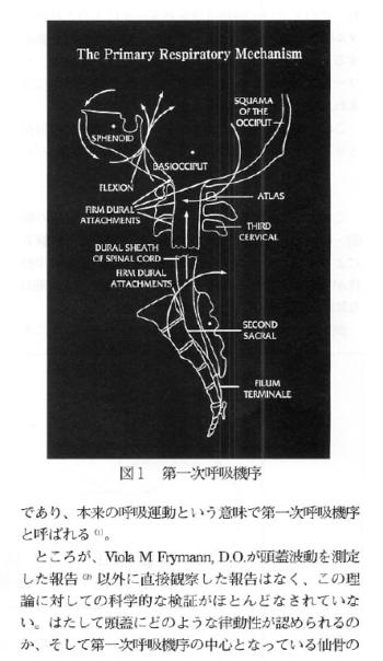 第一次呼吸機序の研究:頭蓋内圧変動の測定からの表紙