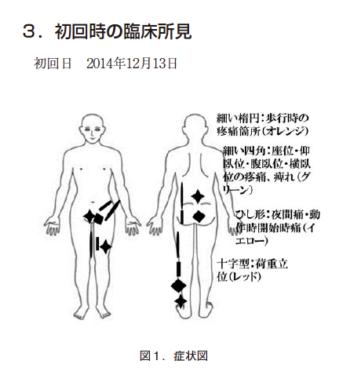 椎間板ヘルニアの一症例 ~カイロプラクティック施術の効果~の表紙