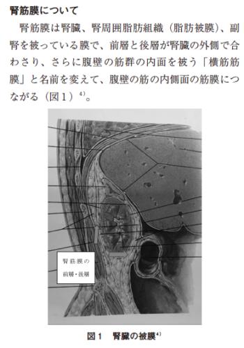 腰痛に対するカイロプラクティックアプローチの1症例の表紙